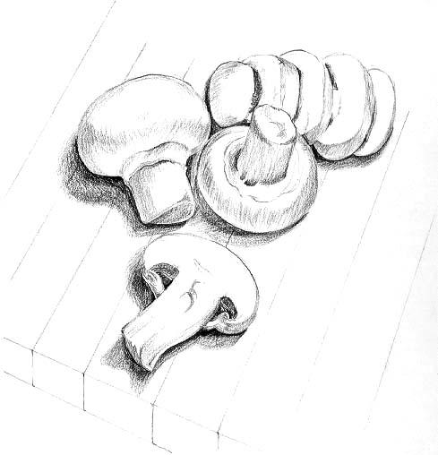 Wild About Mushrooms: Button Mushroom